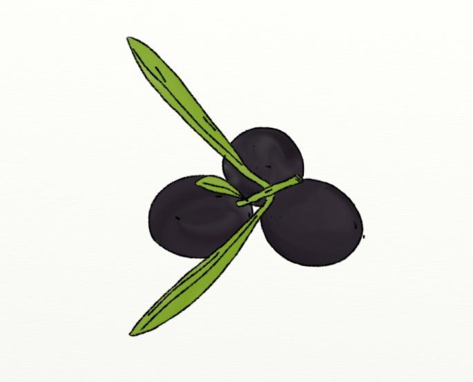 Olivas negras. Olives negres.